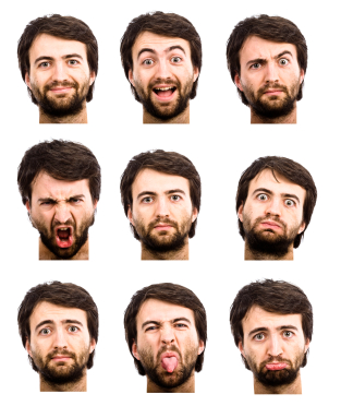 facial expressions and gestures